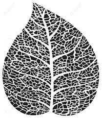sudbury naturopath